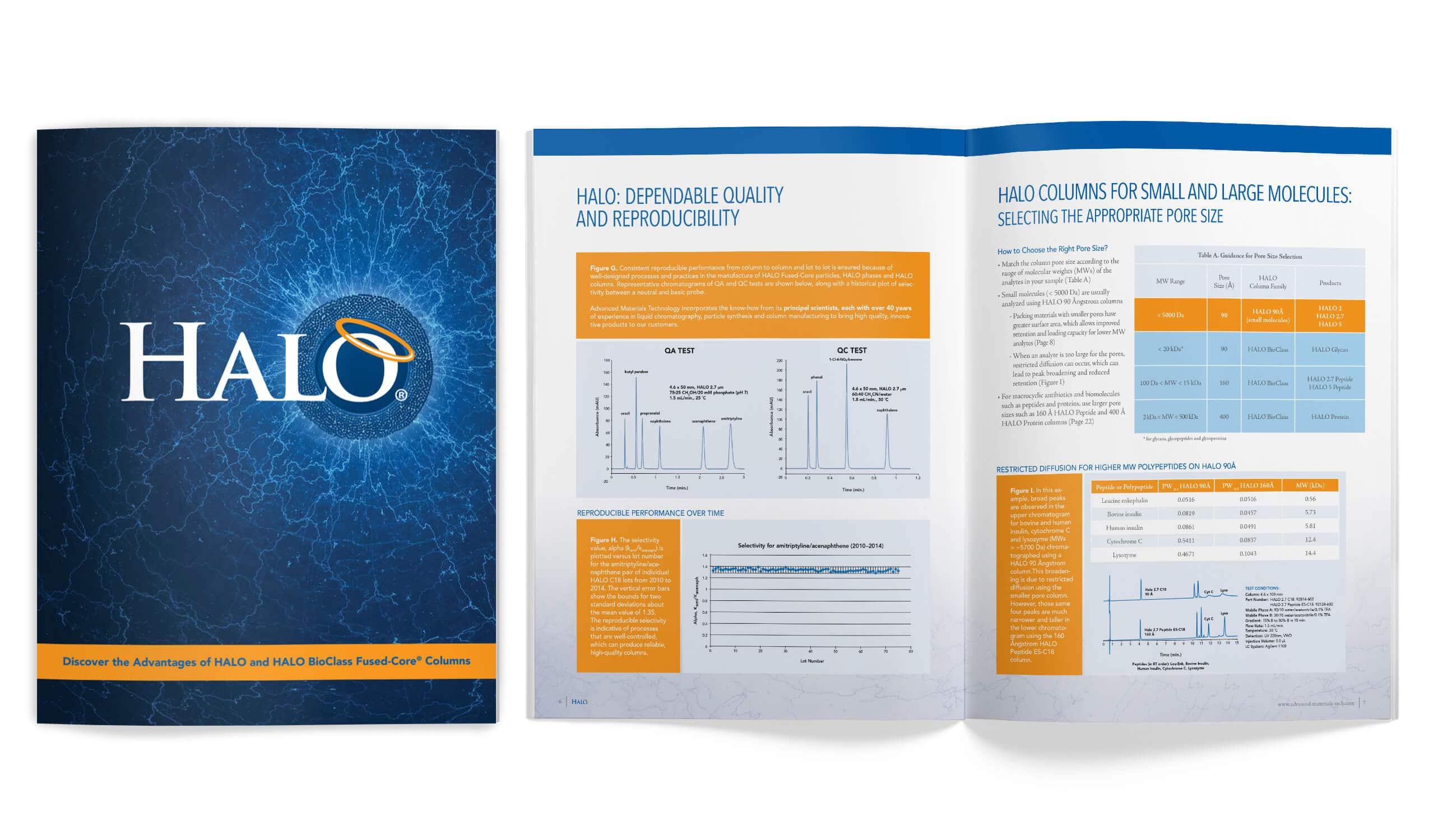 AMG Halo catalog
