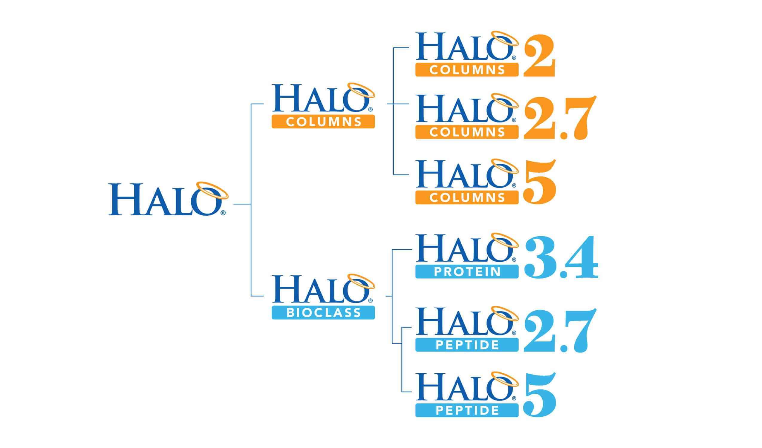AMT Halo2 Naming hierarchy