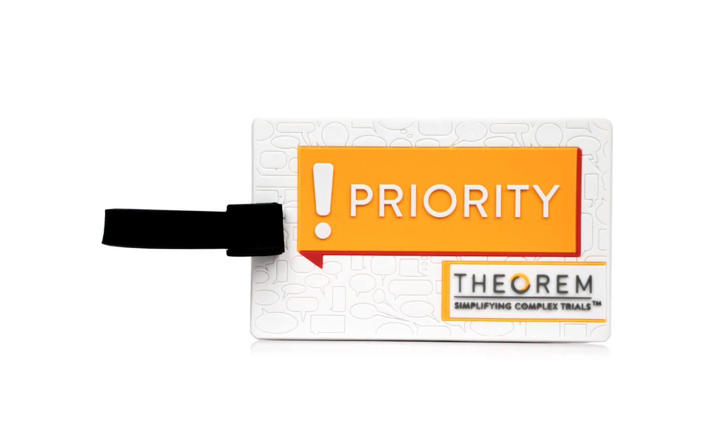 theorem luggage tag